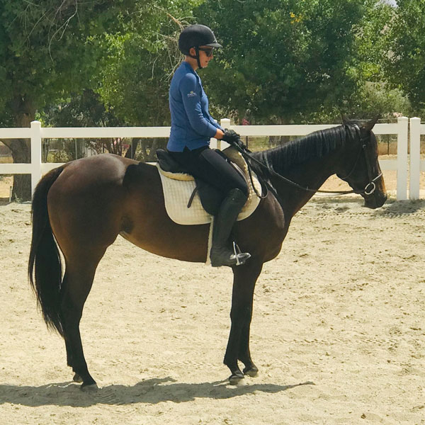 Horse for Sale - Twiggy